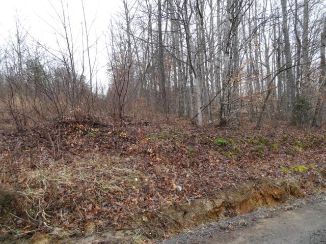 Lot 24 Trail Way, Newport, TN 37821 (#1069678) :: Billy Houston Group
