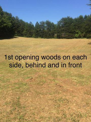 711 Adams Road, Strawberry Plains, TN 37871 (#1069681) :: The Creel Group | Keller Williams Realty