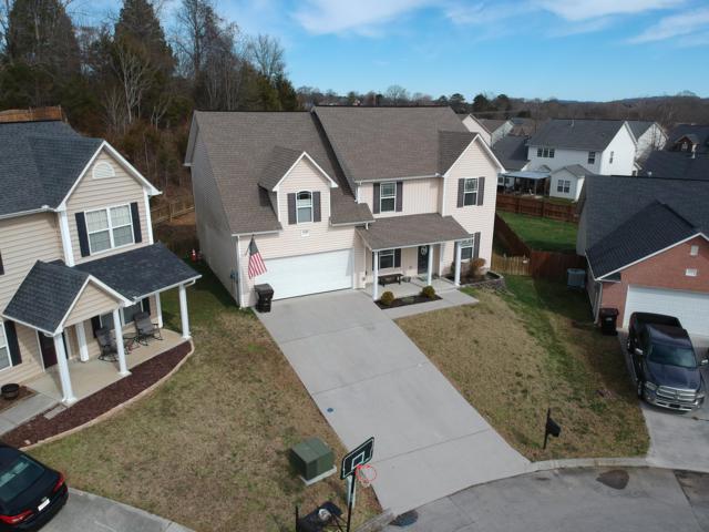6569 Painter Farm Lane, Knoxville, TN 37931 (#1069744) :: Catrina Foster Group