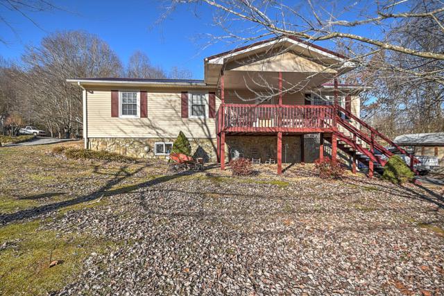306 Holston Terrace Drive, Rogersville, TN 37857 (#1069761) :: Billy Houston Group