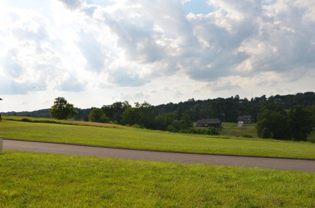 Lot 127 Ohio Street, Seymour, TN 37865 (#1069788) :: Billy Houston Group