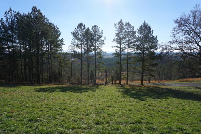 Overlook Way, Vonore, TN 37885 (#1069836) :: Venture Real Estate Services, Inc.