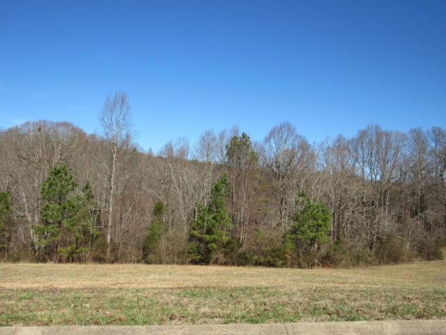 County Road 321 Lot 7, Niota, TN 37826 (#1070031) :: Billy Houston Group