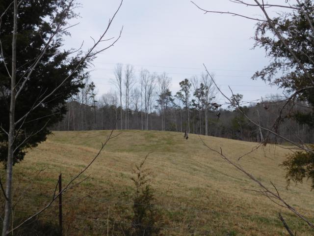 Asheville Hwy, Strawberry Plains, TN 37871 (#1070063) :: Billy Houston Group