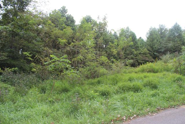 Camp Galilee Rd, LaFollette, TN 37766 (#1070070) :: Shannon Foster Boline Group