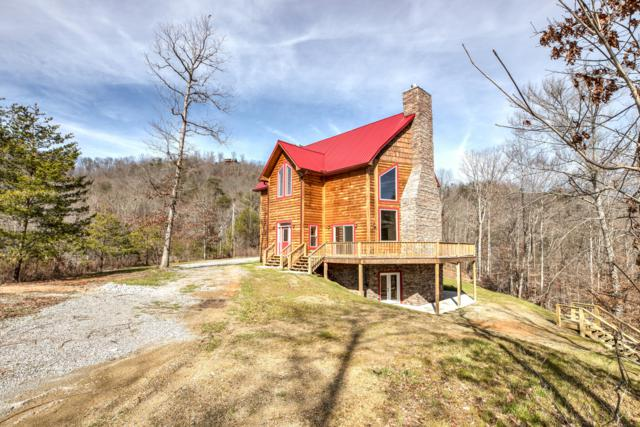 339 Lick Branch Drive, New Tazewell, TN 37825 (#1070083) :: Billy Houston Group