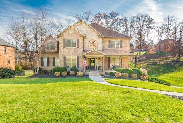 736 Fox Dale Lane, Knoxville, TN 37934 (#1070124) :: Billy Houston Group