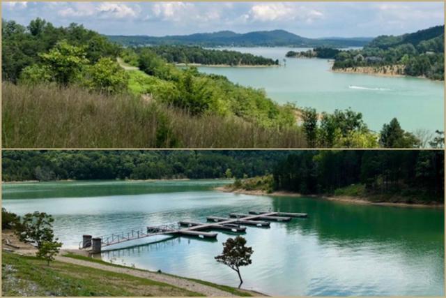 Lot 63 Emerald Pointe Blvd, Dandridge, TN 37725 (#1070191) :: Venture Real Estate Services, Inc.