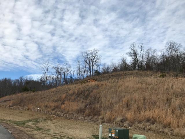 W Mountain Lot 397 Drive, Rockwood, TN 37854 (#1070217) :: The Creel Group | Keller Williams Realty