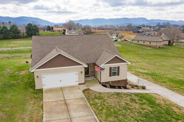 132 Settlers Pointe Circle, Maryville, TN 37804 (#1070235) :: The Cook Team