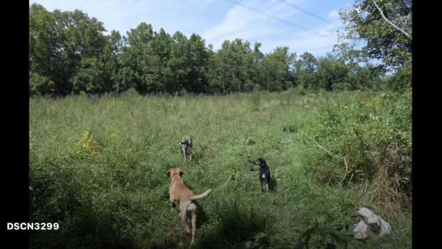 0 Bull Run Valley Rd, Powell, TN 37849 (#1070310) :: The Cook Team