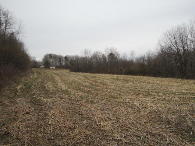 Ray Brown Rd, Jamestown, TN 38556 (#1070335) :: Venture Real Estate Services, Inc.