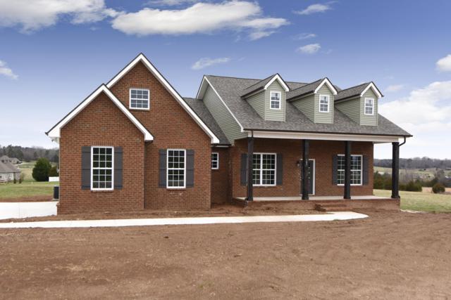 105 Shannadoah Lane, Madisonville, TN 37354 (#1070406) :: Catrina Foster Group