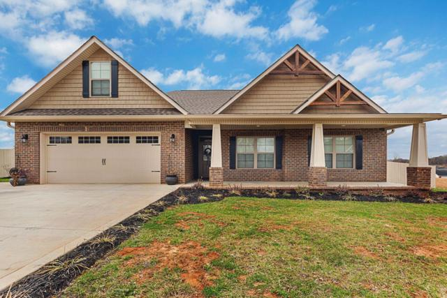 1511 Rosewood Drive, Sevierville, TN 37876 (#1070407) :: Billy Houston Group