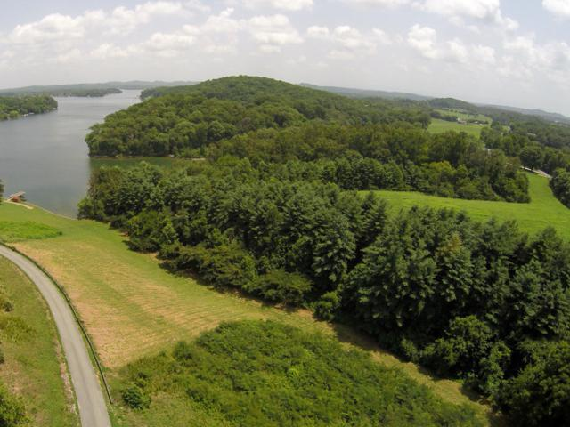 920 Parks Ferry Rd, Friendsville, TN 37737 (#1070473) :: Shannon Foster Boline Group