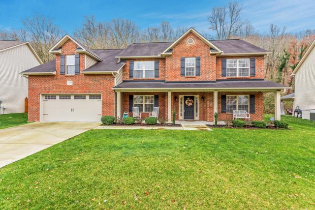 11732 Edison Drive, Knoxville, TN 37932 (#1070621) :: Catrina Foster Group