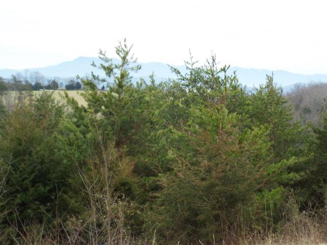 English Fields Drive, Newport, TN 37821 (#1070650) :: Shannon Foster Boline Group
