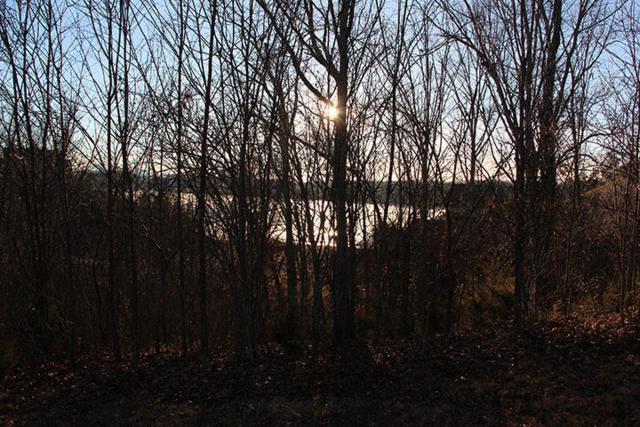 Lot 59 Stone Bridge Drive, Dandridge, TN 37725 (#1070671) :: Realty Executives Associates