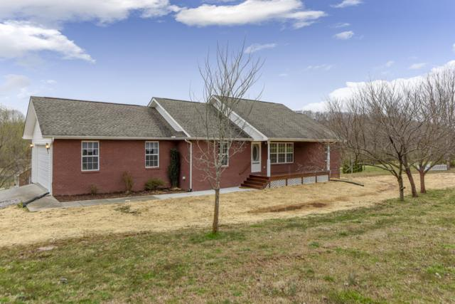 2735 Lexy Drive, Maryville, TN 37803 (#1070711) :: Catrina Foster Group