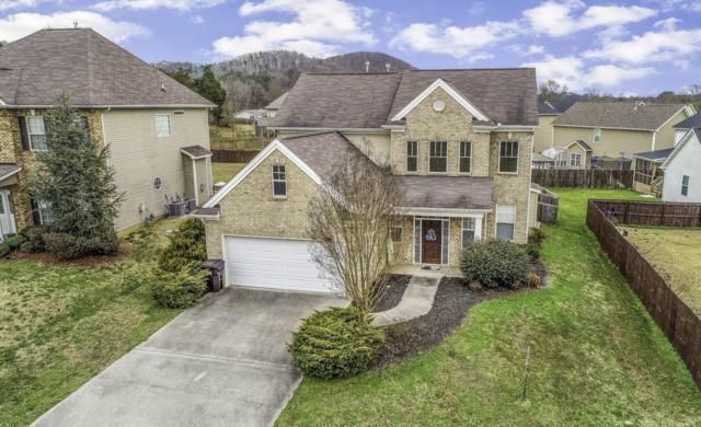 2804 Red Ellis Lane, Knoxville, TN 37924 (#1070751) :: Realty Executives Associates
