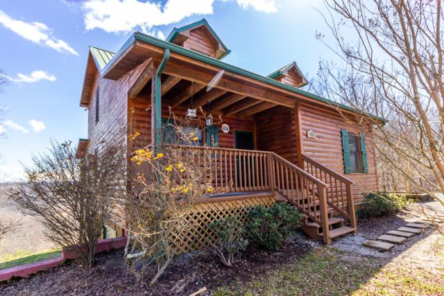 119 Cloverdale Lane, New Tazewell, TN 37825 (#1070894) :: Venture Real Estate Services, Inc.