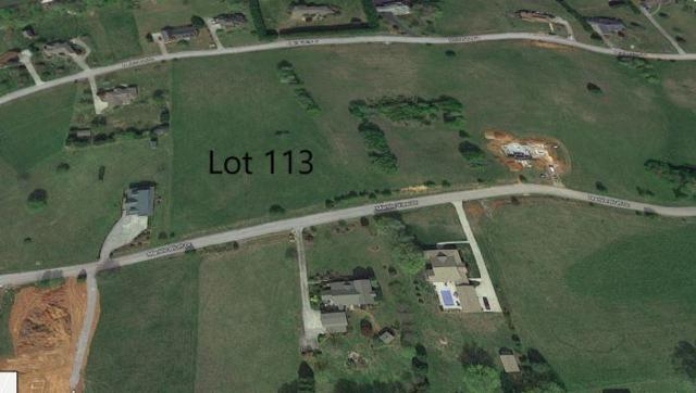 Marble Bluff, Kingston, TN 37763 (#1070948) :: Venture Real Estate Services, Inc.