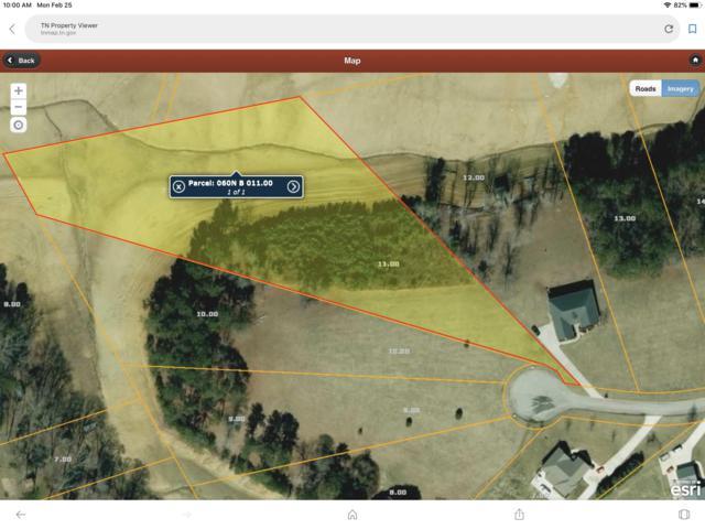 Big Oak Drive, Dandridge, TN 37725 (#1070979) :: Shannon Foster Boline Group