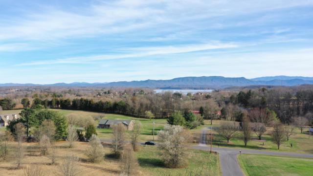 Gaby Hills Drive, Dandridge, TN 37725 (#1071201) :: Venture Real Estate Services, Inc.