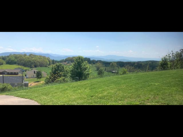 Lot 32 English Meadows Drive, White Pine, TN 37890 (#1071260) :: Shannon Foster Boline Group