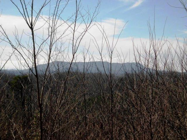 Polly Mountain Rd, Madisonville, TN 37354 (#1071728) :: Venture Real Estate Services, Inc.