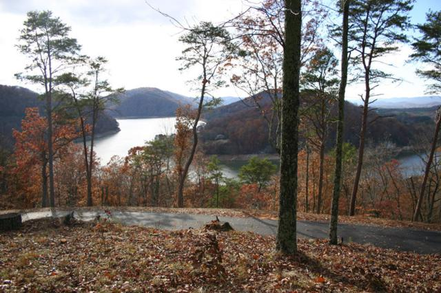 Lot 3 Hickory Knoll Circle, Whitesburg, TN 37891 (#1071880) :: Shannon Foster Boline Group
