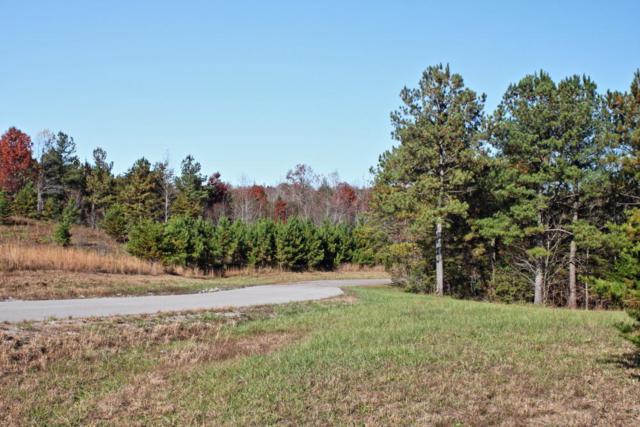 Lot 21 Vista View Pkwy, Jamestown, TN 38556 (#1072112) :: CENTURY 21 Legacy