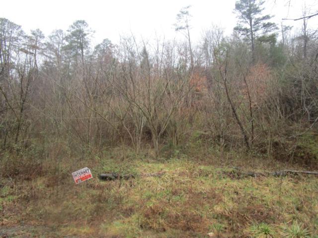 Brown Creek Drive, Crossville, TN 38571 (#1072163) :: Venture Real Estate Services, Inc.