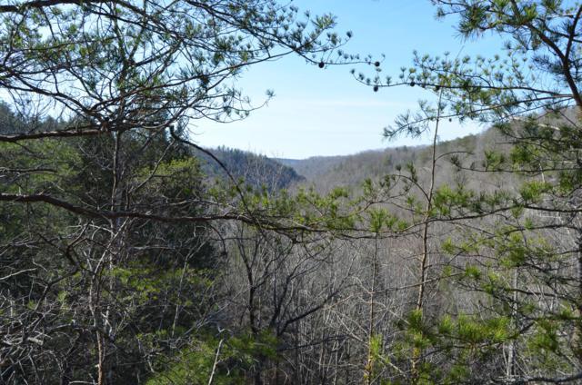 Soak Creek Lane, Grandview, TN 37337 (#1072196) :: The Creel Group | Keller Williams Realty