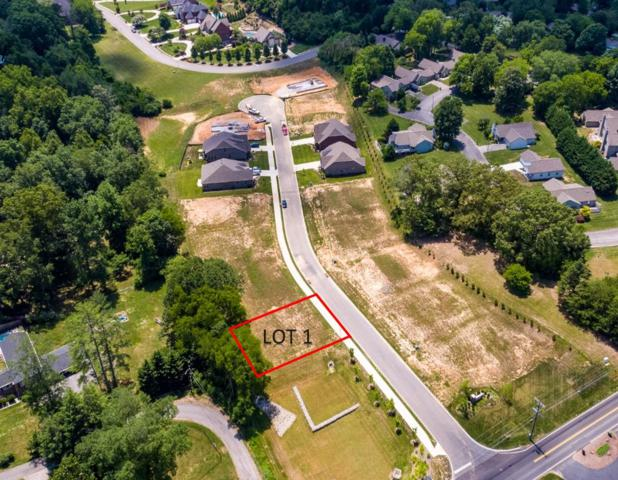106 Broady Meadow Circle, Maryville, TN 37803 (#1072289) :: Billy Houston Group