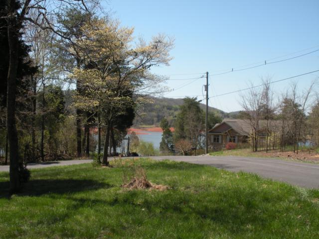 445 Chelaque Way, Mooresburg, TN 37811 (#1072294) :: Venture Real Estate Services, Inc.