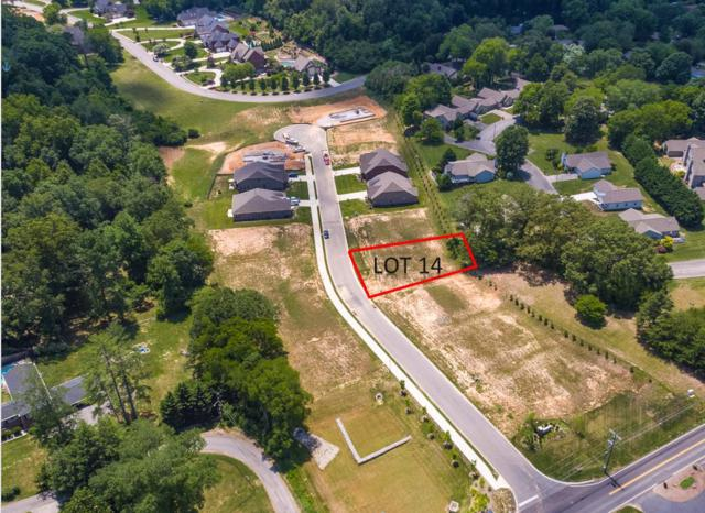 109 Broady Meadow Circle, Maryville, TN 37803 (#1072298) :: Billy Houston Group