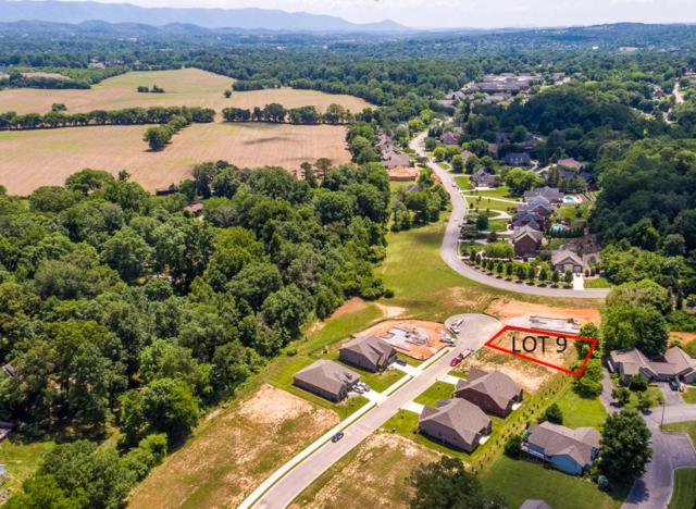 119 Broady Meadow Circle, Maryville, TN 37803 (#1072307) :: Billy Houston Group