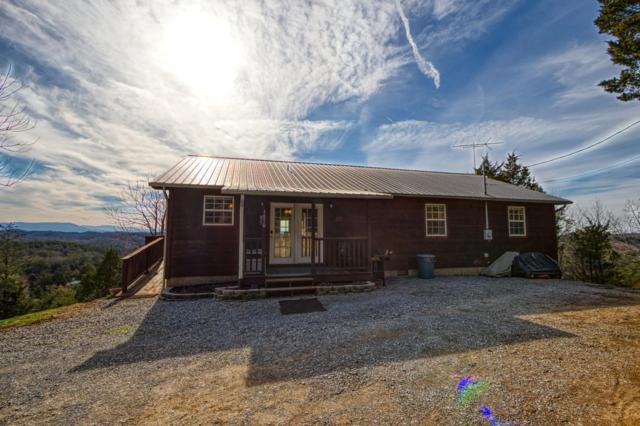 1670 Moon Hollow Rd, Sevierville, TN 37876 (#1072310) :: The Terrell Team