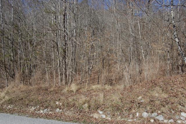 300 Bluegreen Way, Rockwood, TN 37854 (#1072338) :: Cindy Kraus Group | Realty Executives Associates
