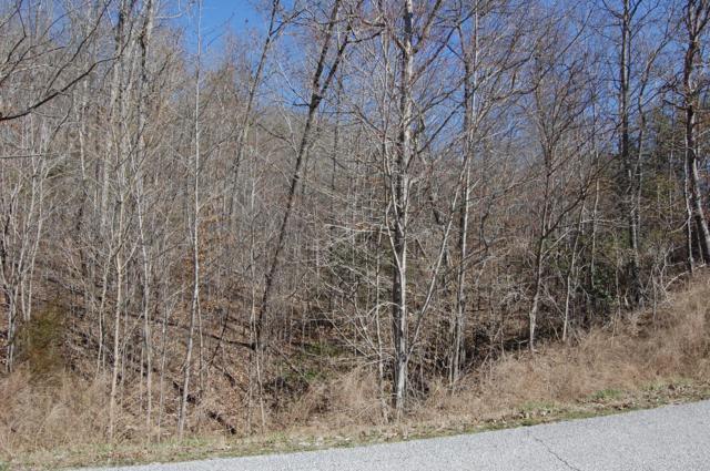 321 Bluegreen Way, Rockwood, TN 37854 (#1072340) :: Cindy Kraus Group | Realty Executives Associates