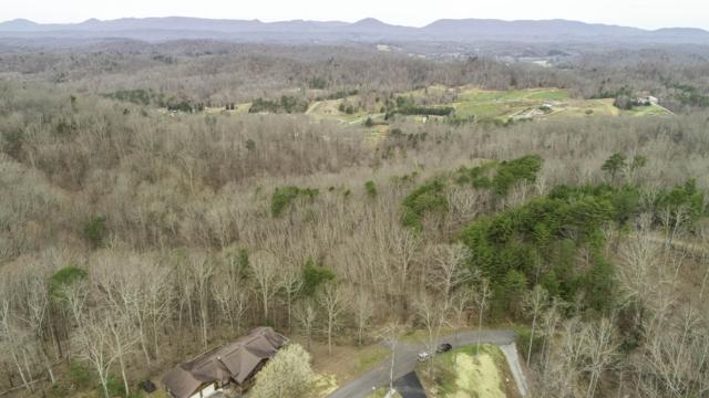 Tract 8 Skyline Lane, Powell, TN 37849 (#1072417) :: Venture Real Estate Services, Inc.
