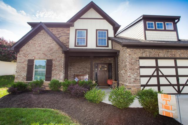 7506 Bellingham Drive, Knoxville, TN 37919 (#1072462) :: Billy Houston Group