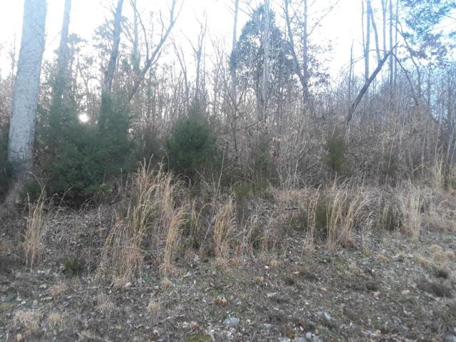 Hickory Pointe Lane, Maynardville, TN 37807 (#1072483) :: CENTURY 21 Legacy