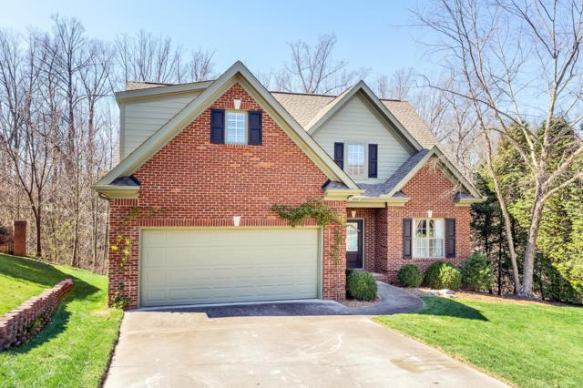 7024 Shady Knoll Lane, Knoxville, TN 37919 (#1072531) :: Billy Houston Group