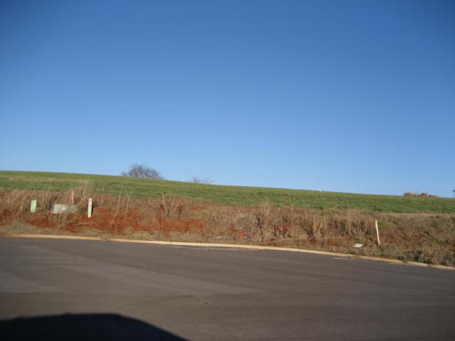 212 Terry Lane, Madisonville, TN 37354 (#1072929) :: Cindy Kraus Group | Realty Executives Associates