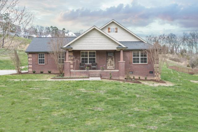 8012 Campbells Point Rd, Corryton, TN 37721 (#1073024) :: Shannon Foster Boline Group