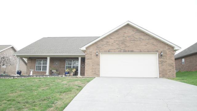 1010 Mercer Drive, Maryville, TN 37801 (#1073037) :: Billy Houston Group