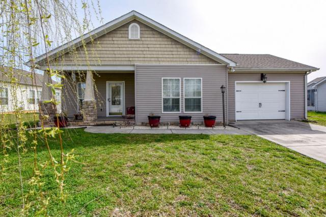 1123 Gregory Valley Drive, Sevierville, TN 37876 (#1073074) :: The Terrell Team