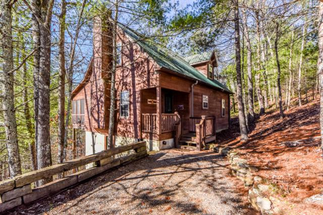 205 Cutter Gap Rd, Townsend, TN 37882 (#1073090) :: Venture Real Estate Services, Inc.